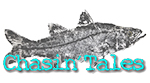 chasin scroll logo