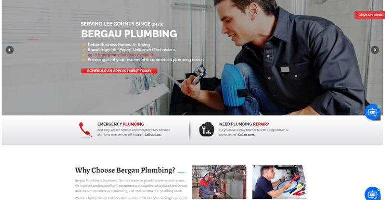 bergauplumbing com 1608008599352